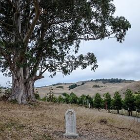 ***** Challenge #233:  Cemeteries *********