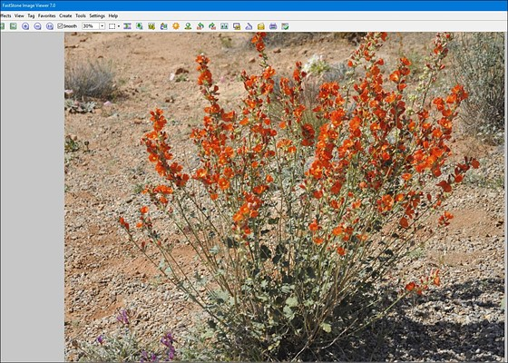 Faststone Image Viewer 7 released : Retouching Forum