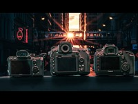 Full-frame showdown: Nikon D850 vs Canon 5D IV vs Sony a7R III