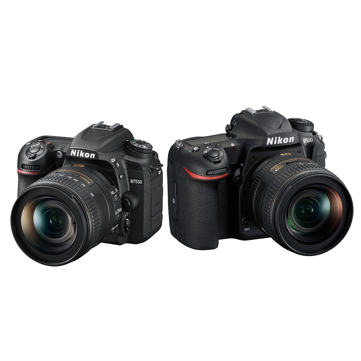 Nikon D7500 vs Nikon D500: Which is better for you?: Digital ...