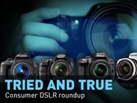 2014 Consumer DSLR Roundup