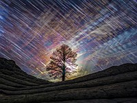 New book and time-lapse video features photos taken without light pollution