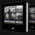 Is it fraud? Monochrome Photography Awards judges speak out