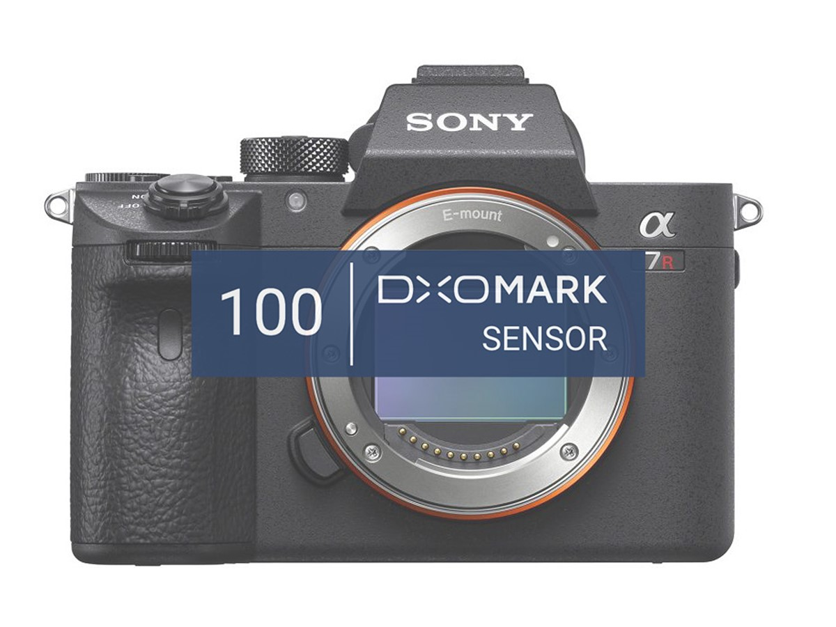 Sony a7R III ties Nikon D850: Best mirrorless full-frame camera ...