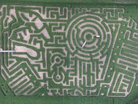 Long Acre Farms in New York celebrates Kodak with giant camera corn maze design