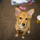 Sony 24mm F1.4 GM sample gallery