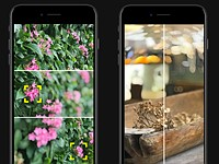 The free Focos app brings more professional looking bokeh to your dual-cam iPhone