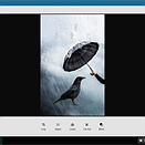 Adobe brings Android CC apps to Chromebooks
