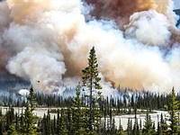Wildfire picture wins £3000 international Environmental Photographer of the Year Award
