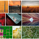 Slideshow: Sony World Photography Awards Open Competition 2020 winners and shortlisted images