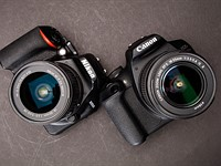 Nikon D3500 vs. Canon T7: Which is better?