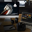 Datacolor announces two new SpyderX Tool Kits for an all-in-one color correction workflow