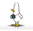 What The Duck #1449