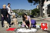 Two photographers re-imagine city potholes