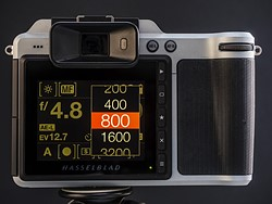 Medium-format meets the modern age: Hasselblad X1D-50c  shooting experience 5