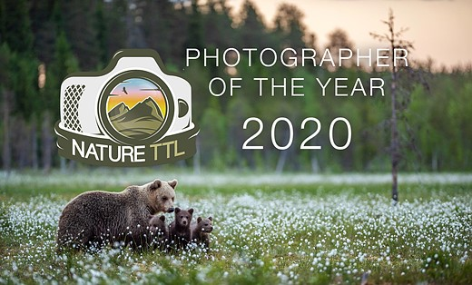 Slideshow: Inaugural Nature TTL Photographer of the Year 2020 winners