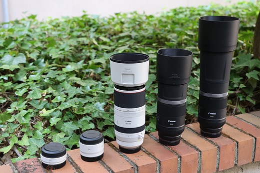 Hands-on with new Canon RF 100-500mm, 600mm and 800mm telephoto lenses