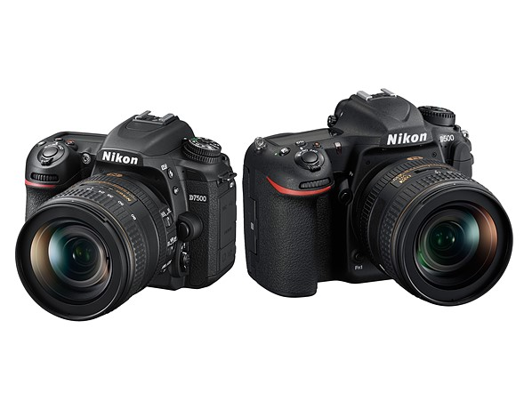 Nikon D7500 vs Nikon D500: Which is better for you?: Digital