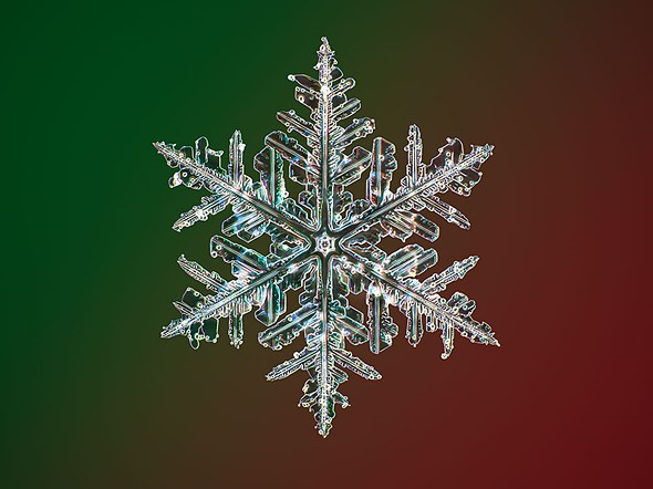 Photographer Captures The Highest Resolution Snowflake Photos In The World Digital Photography Review