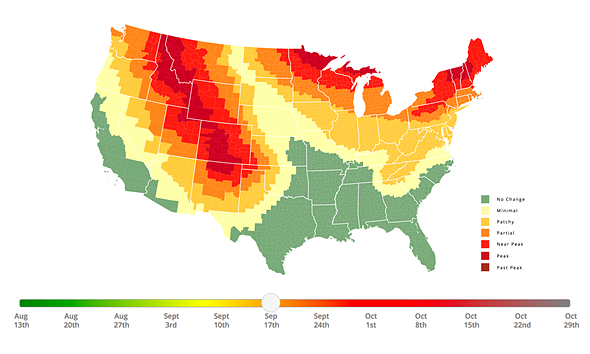 This Interactive Fall Foliage Prediction Map Helps Photographers - Us fall color map