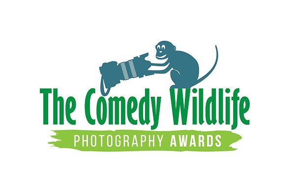 2019 The Comedy Wildlife Photography Awards