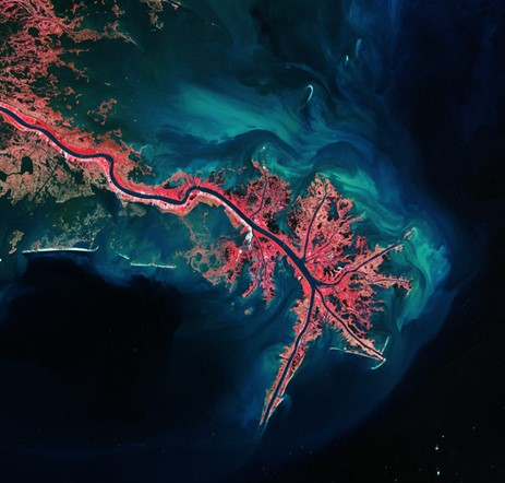 Images of earth from space: Mississippi River Delta