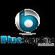 Blue Sapphire Consultant Reviews