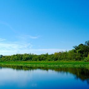 St. John's River A77