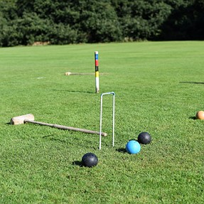 Anyone for Croquet !