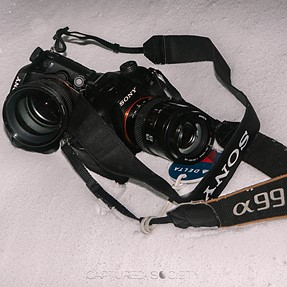 A99II Sample Shots- Snowed In