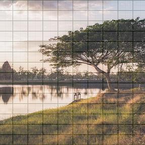 Magnification vs Megapixels vs Lens Design