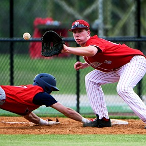 Nikon D500 does high school baseball/softball