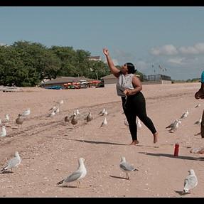4K 120P Slow Motion: Feeding the Gulls