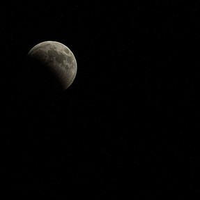 Post your super blood wolf moon photos
