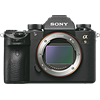 Sony a9 Review