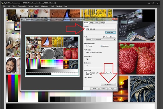 how to change color settings on canon printer