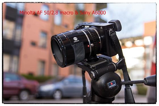 minolta af 50 2 8 macro with sony a6000 pics sony alpha nex e rh dpreview com Best Sony Alpha Lenses Sony Alpha A6300 Bottom