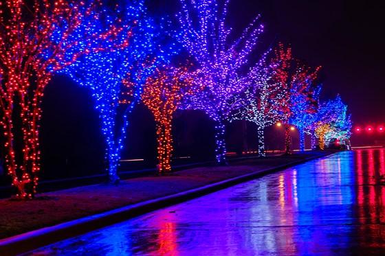 Christmas Lights in the Rain: Fujifilm X System / SLR Talk Forum: Digital  Photography Review - Christmas Lights In The Rain: Fujifilm X System / SLR Talk Forum