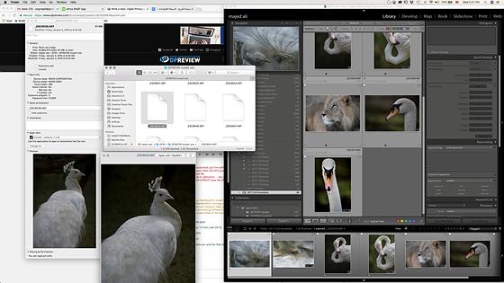 Macbook Pro not recognizing my D850 files : Nikon FX SLR (DF, D1-D5