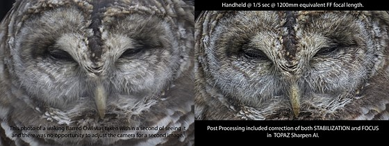 Example of TOPAZ Sharpen AI with both Focus & Stabilization