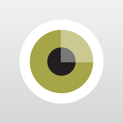 Visual Supply Co's VSCO Cam app offers image filters before