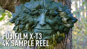 Fujifilm X-T3 Video Sample - 4K Eterna by DPReview.com
