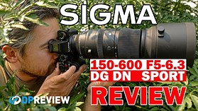 Sigma 150-600mm F5-6.3 DG DN Sports Review